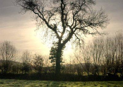 Silhouette - A Devon Village