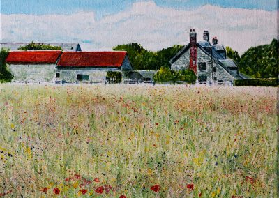 Wild Flower Meadow - Acrylic on Canvas 30x25cm.
