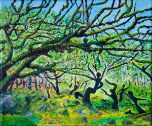 Woodland Dance - Spring Dawn.